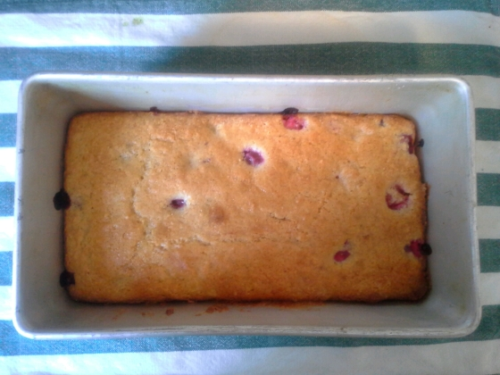 cranberry cake in the pan